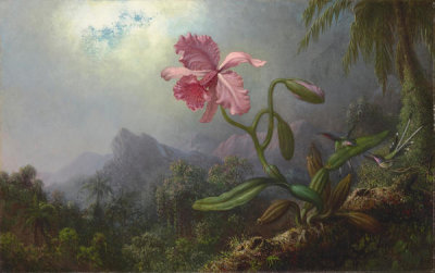 Martin Johnson Heade - Two Hummingbirds with an Orchid, 1875